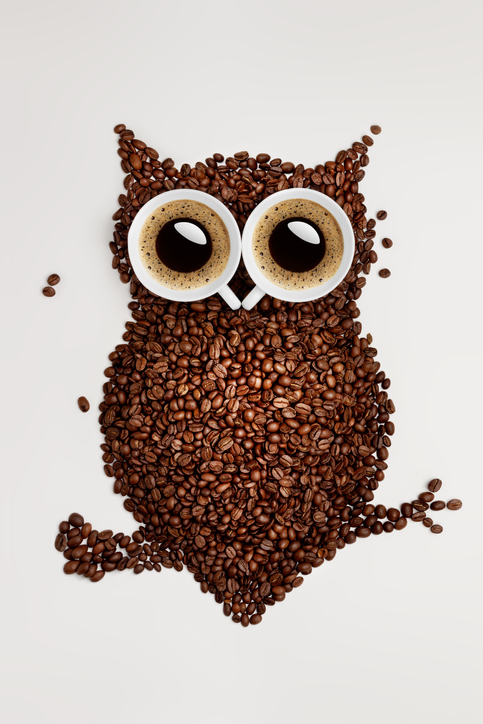 An owl made of coffee